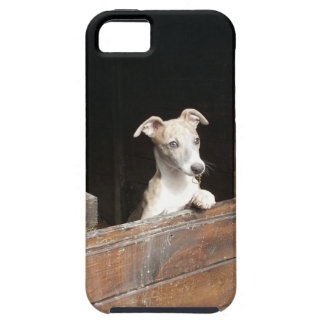 Rustic iPhone 5 Covers