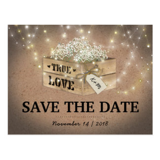 Rustic Country Baby's Breath Lights Save the Date Postcard