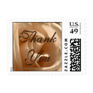 Rustic Cream Rose Thank You (Small Square) Postage