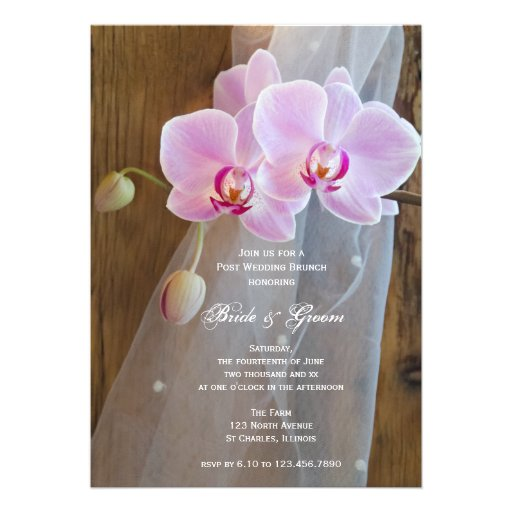 Rustic Elegance Country Post Wedding Brunch Personalized Announcement