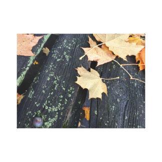 Rustic Fall Leaves on Wood Canvas Print
