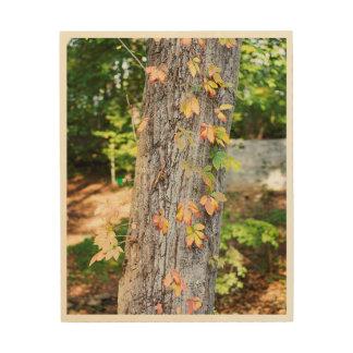 Rustic Fall Leaves Wood Print