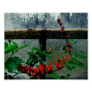 Rustic Garden Floral Poster