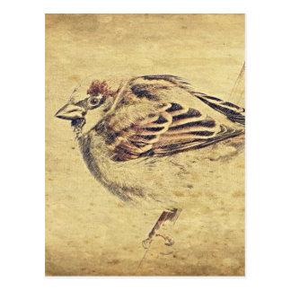 Rustic pencil sketch of a wild bird postcard