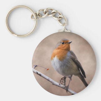 Rustic Robin Keyring Basic Round Button Key Ring