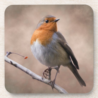 Rustic Robin Set of 6 Coasters