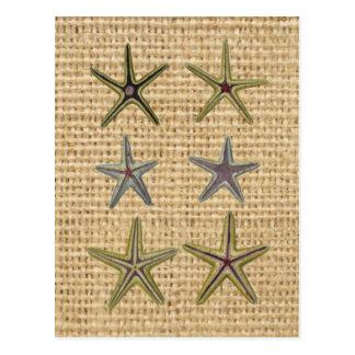 rustic starfish design on burlap background postcard