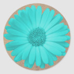 Rustic Teal Gerber Daisy Round Stickers Seals
