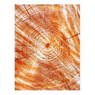 Rustic Tree Rings Wood Design Gifts Postcard