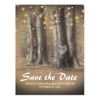 Rustic Tree & String Lights Wedding Save the Date Postcard
