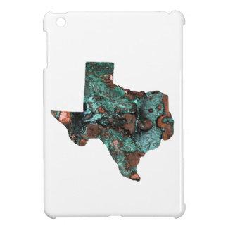 Rustic Turquoise Texas Cover For The iPad Mini