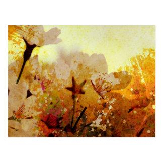 Rustic White Flowers Postcard