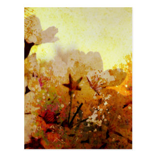 Rustic White Flowers Postcard
