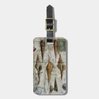 rustic whitewashed coastal chic seashell luggage tag
