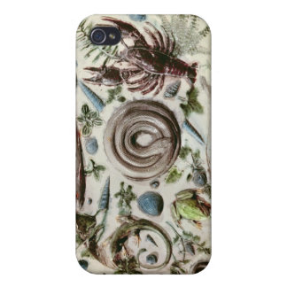 Rustique Figuline' dish with a white background Cases For iPhone 4