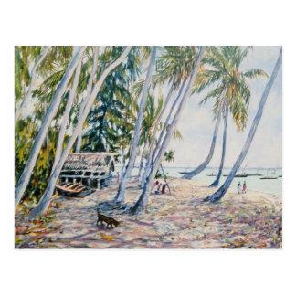Rustling Palms Zanzibar 2002 Postcard