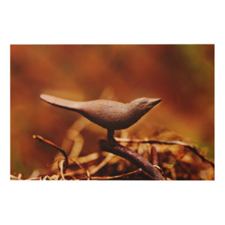 Rusty Bird Bath | Wood Prints