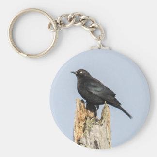Rusty Blackbird Key Ring