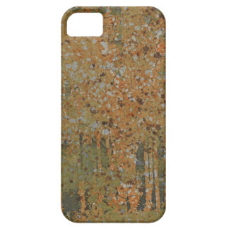 rusty cracked green paint iPhone 5/5S covers