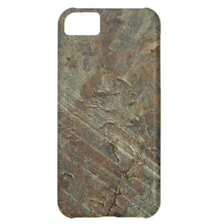 Rusty Metal iPhone 5C Covers