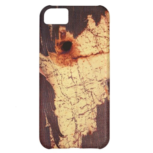 Rusty Plate With Bullet Hole iPhone 5C Cases