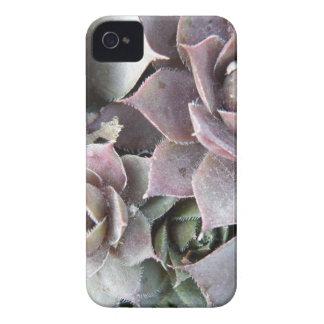Rusty Rose iPhone 4 Case-Mate Case