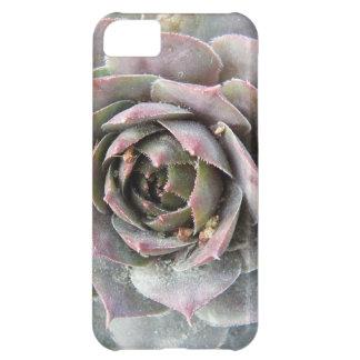 Rusty Rose iPhone 5C Cover