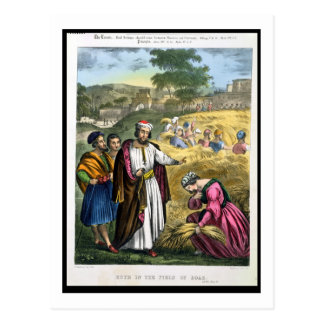 Ruth in the Field of Boaz, from a bible printed by Postcard