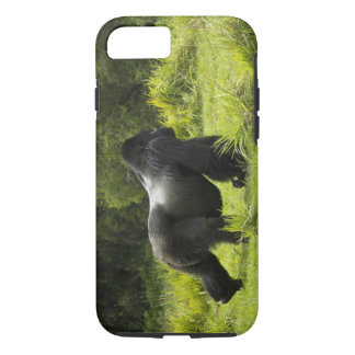 Rwanda, Volcanoes National Park. Mountain 2 iPhone 8/7 Case