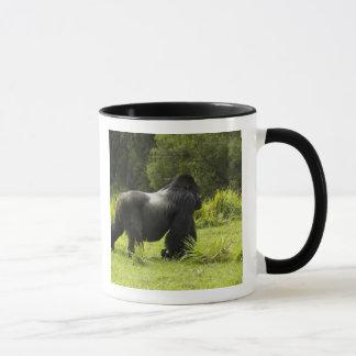 Rwanda, Volcanoes National Park. Mountain 2 Mug