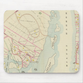 Rye, New York Mouse Mat