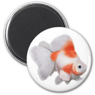 Ryukin Goldfish Round Magnet