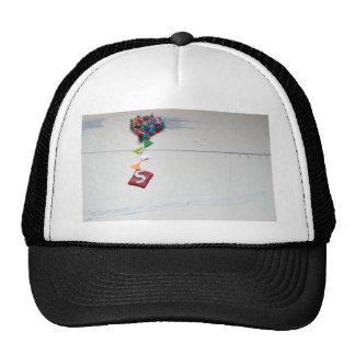 s.jpg cap
