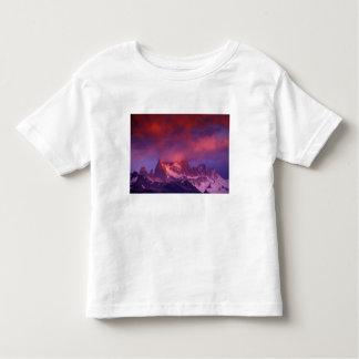 SA, Argentina, Los Glaciares National Park, Toddler T-Shirt