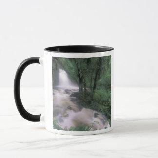 SA, Peru, S.H. Machu Picchu, Cascade and cloud Mug