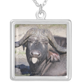 Sabi Sands Conservancy, Mpumalanga Province, 2 Silver Plated Necklace