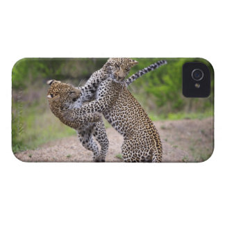 Sabi Sands Conservancy, Mpumalanga Province, iPhone 4 Case-Mate Cases