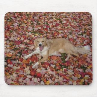 Sable Border Collie~Mousepad Mouse Pad