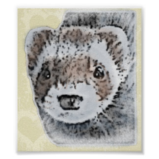 Sable Ferret Picture Poster