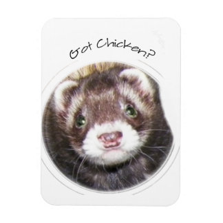 Sable Ferret Picture Rectangle Magnets