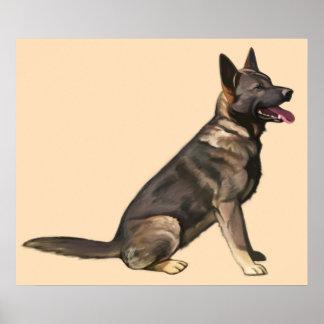 Sable German Shepherd Dog Poster
