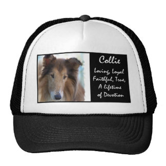 Sable Rough Collie Art Hat