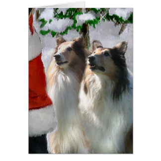 Sable Rough Collie Christmas Gifts Greeting Card
