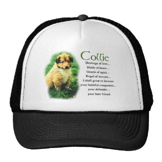 Sable Rough Collie Puppy Gifts Cap