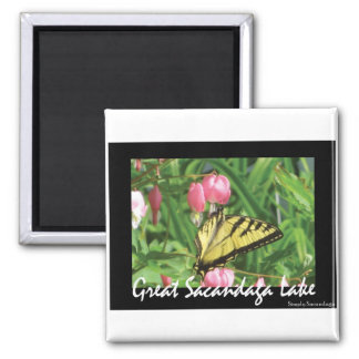 Sacandaga Butterfly Square Magnet