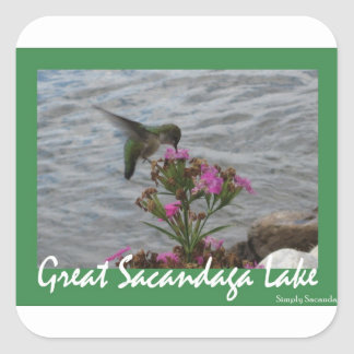 Sacandaga Hummingbird Sticker