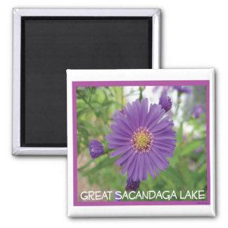 Sacandaga Purple Burst Magnet