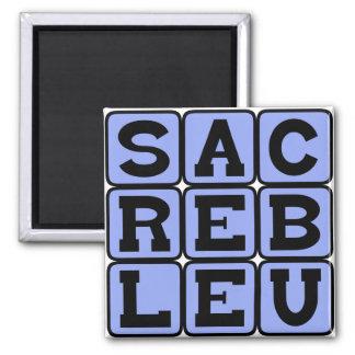 Sacré Bleu French Slang Magnets