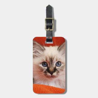 Sacred cat of Burma (Sacred Birman kitten) Bag Tag