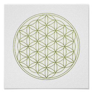 Sacred Geometry Flower Of Life (V-Sprout) Poster